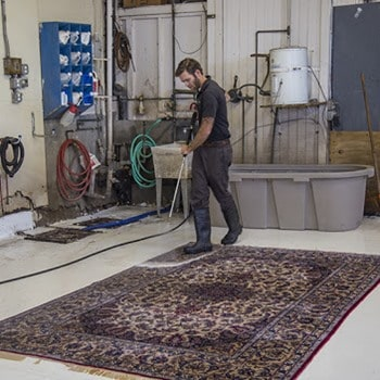 Can You Pressure Wash Carpets