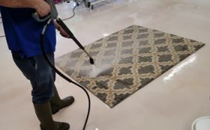 Can You Pressure Wash a Rug Featured